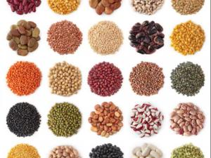 Vegetable seeds