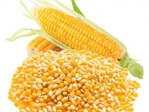 sweet corn 1- GRAB2DEAL